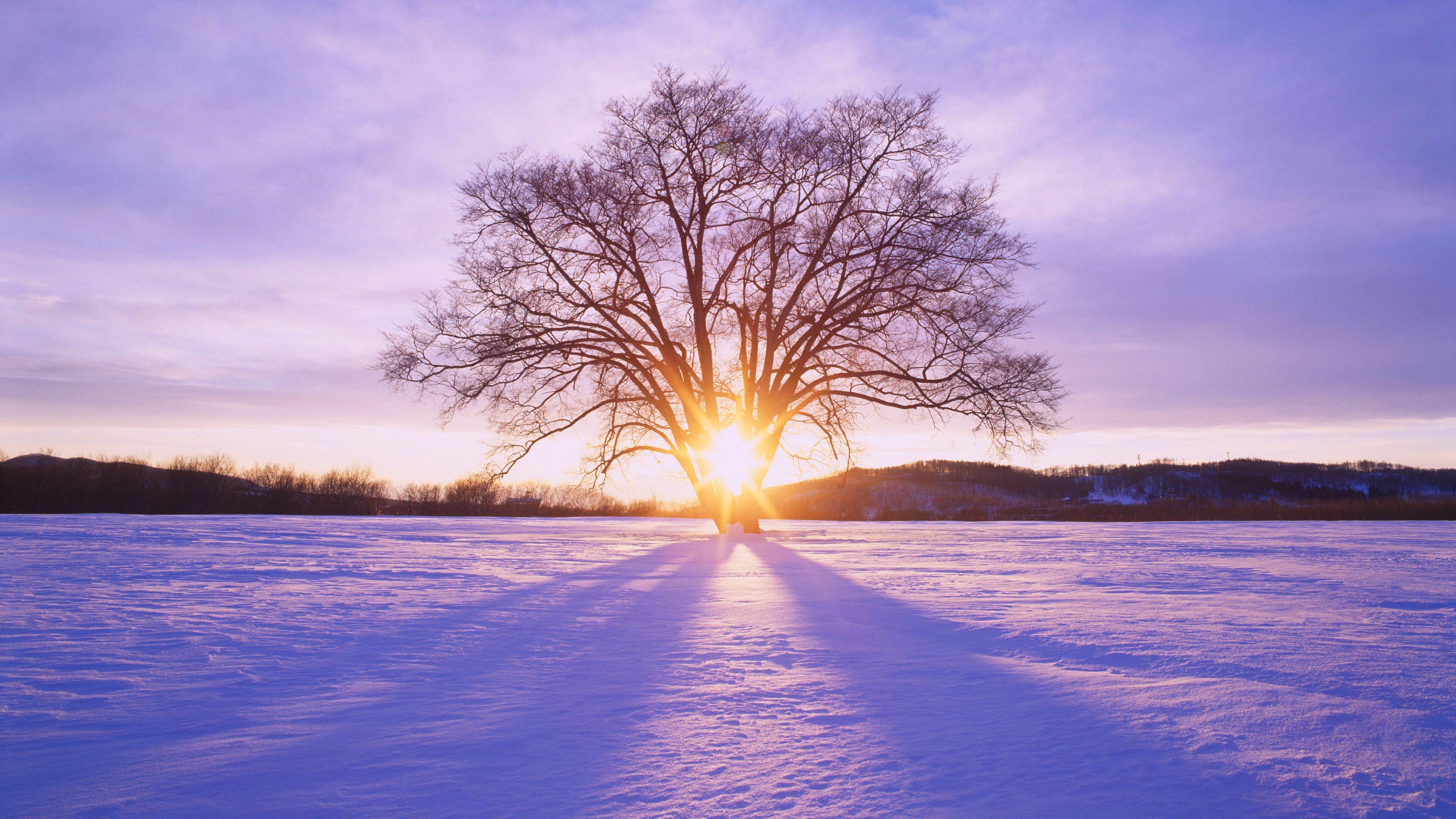Winter Sunset S 4k Wallpaper