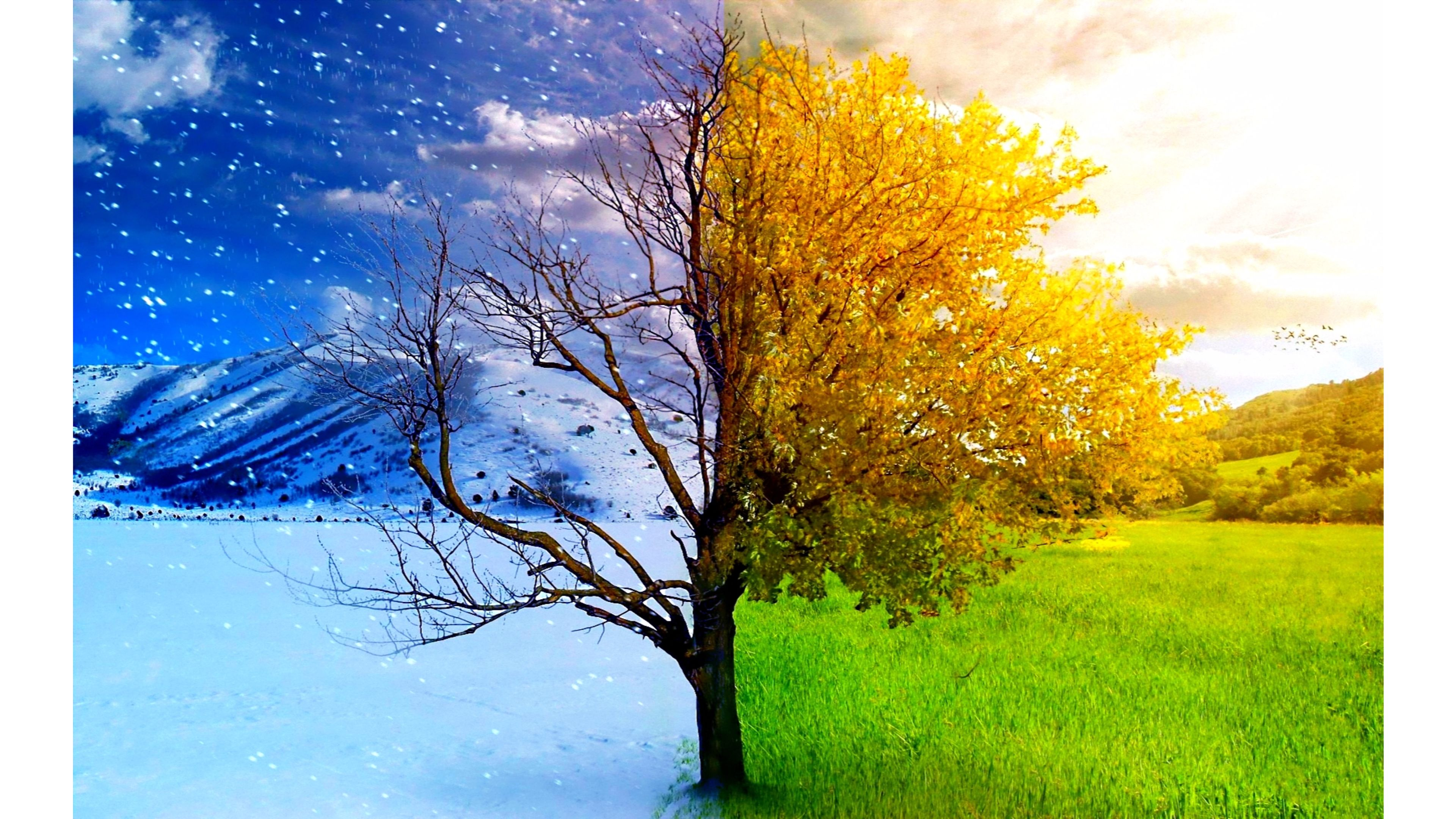 Spring wallpapers photos and desktop backgrounds up to 8k - Seasons wallpaper backgrounds ...