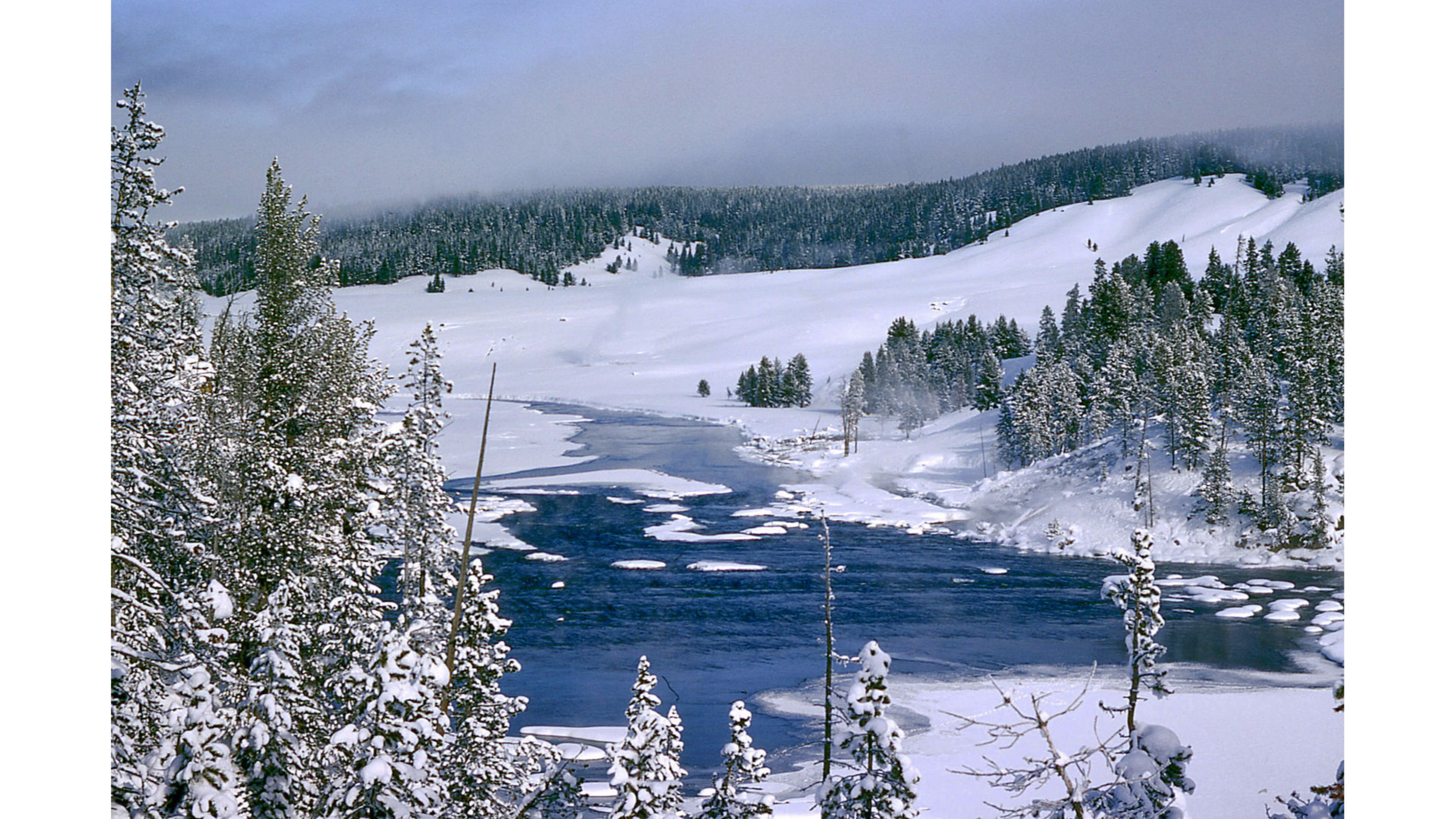 Yellowstone Winter S wallpaper