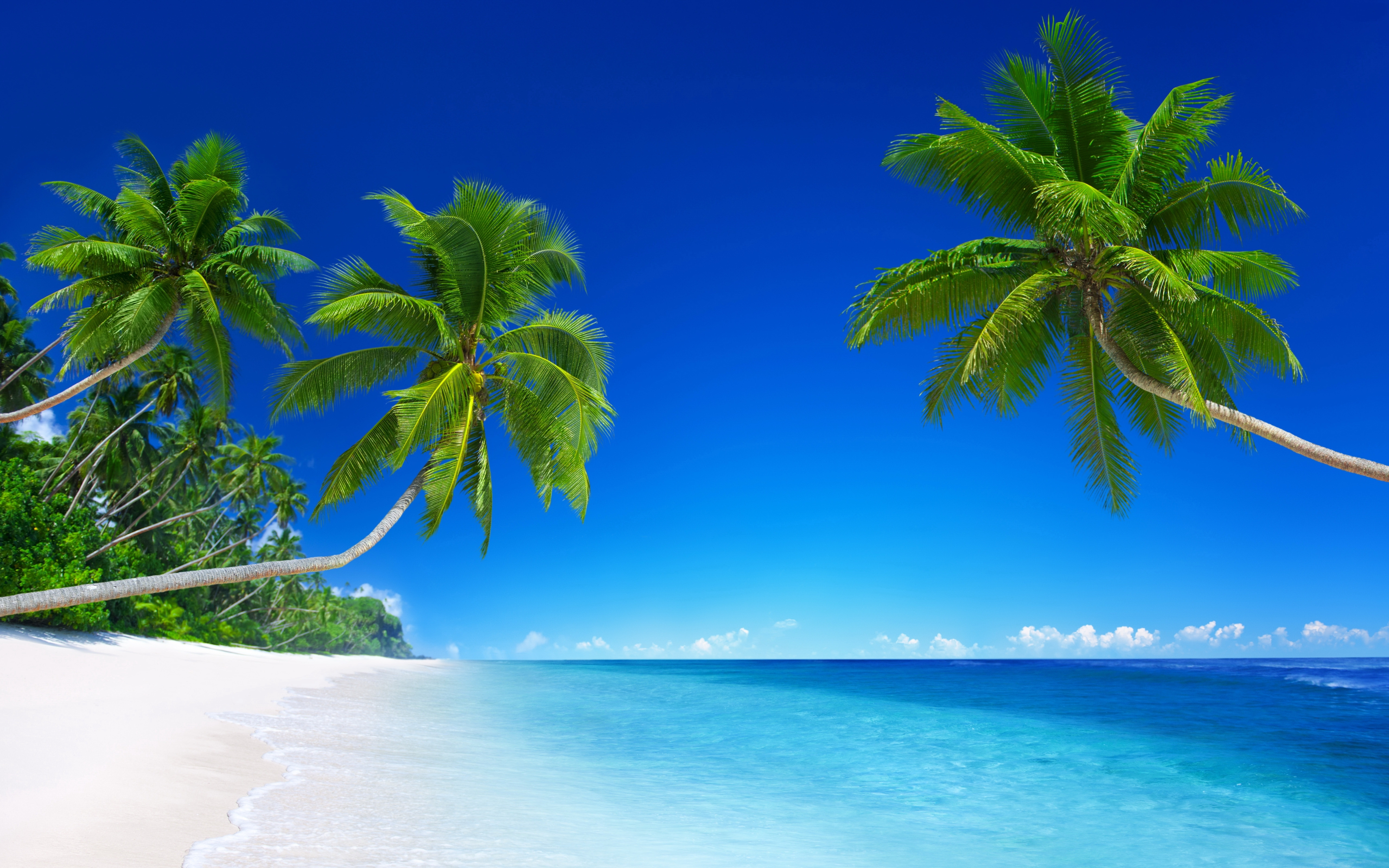 Tropical Beach Paradise 5K wallpaper