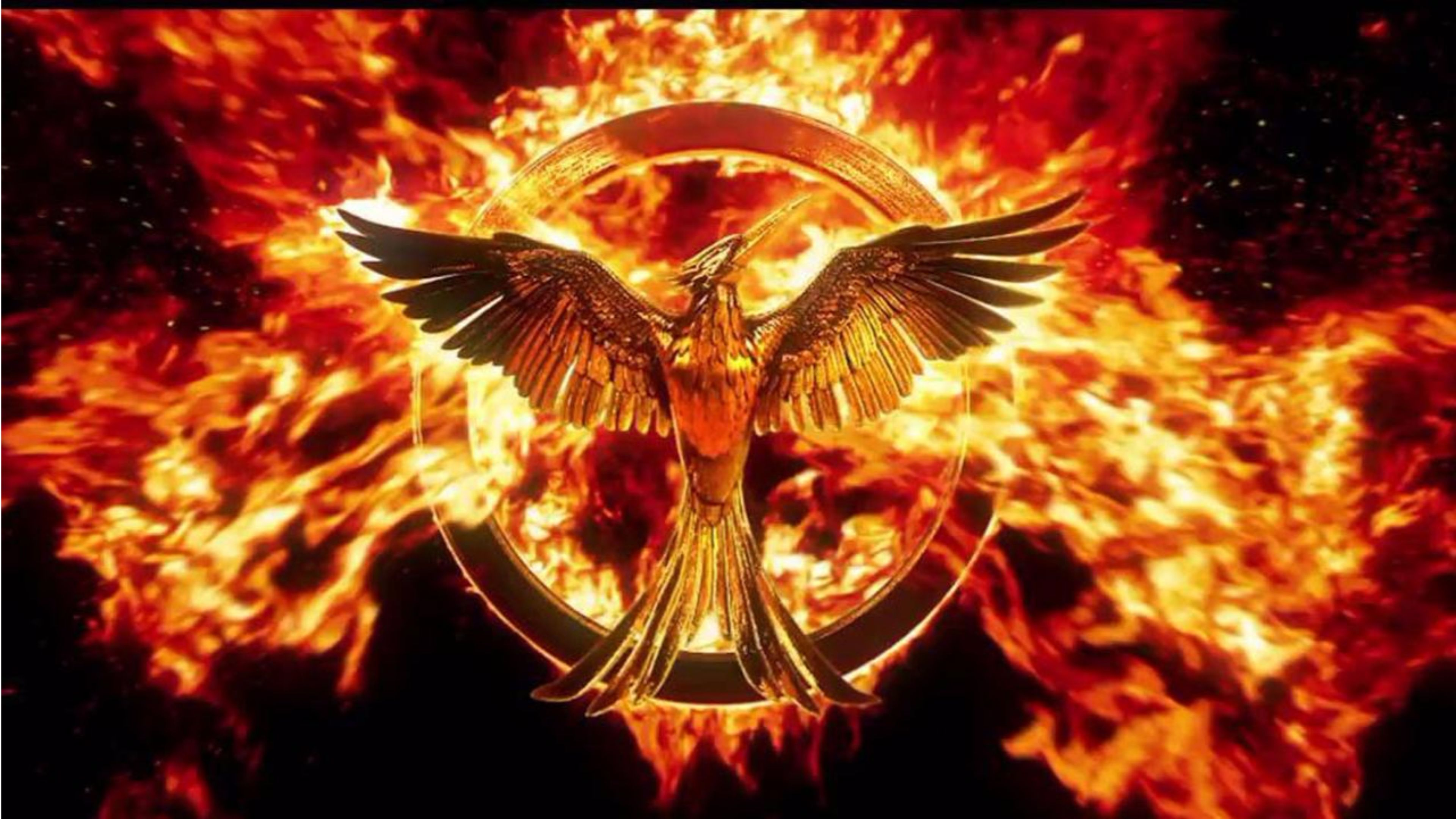 Hunger wallpapers photos and desktop backgrounds up to 8k the hunger games mockingjay part 2 wallpaper voltagebd Image collections