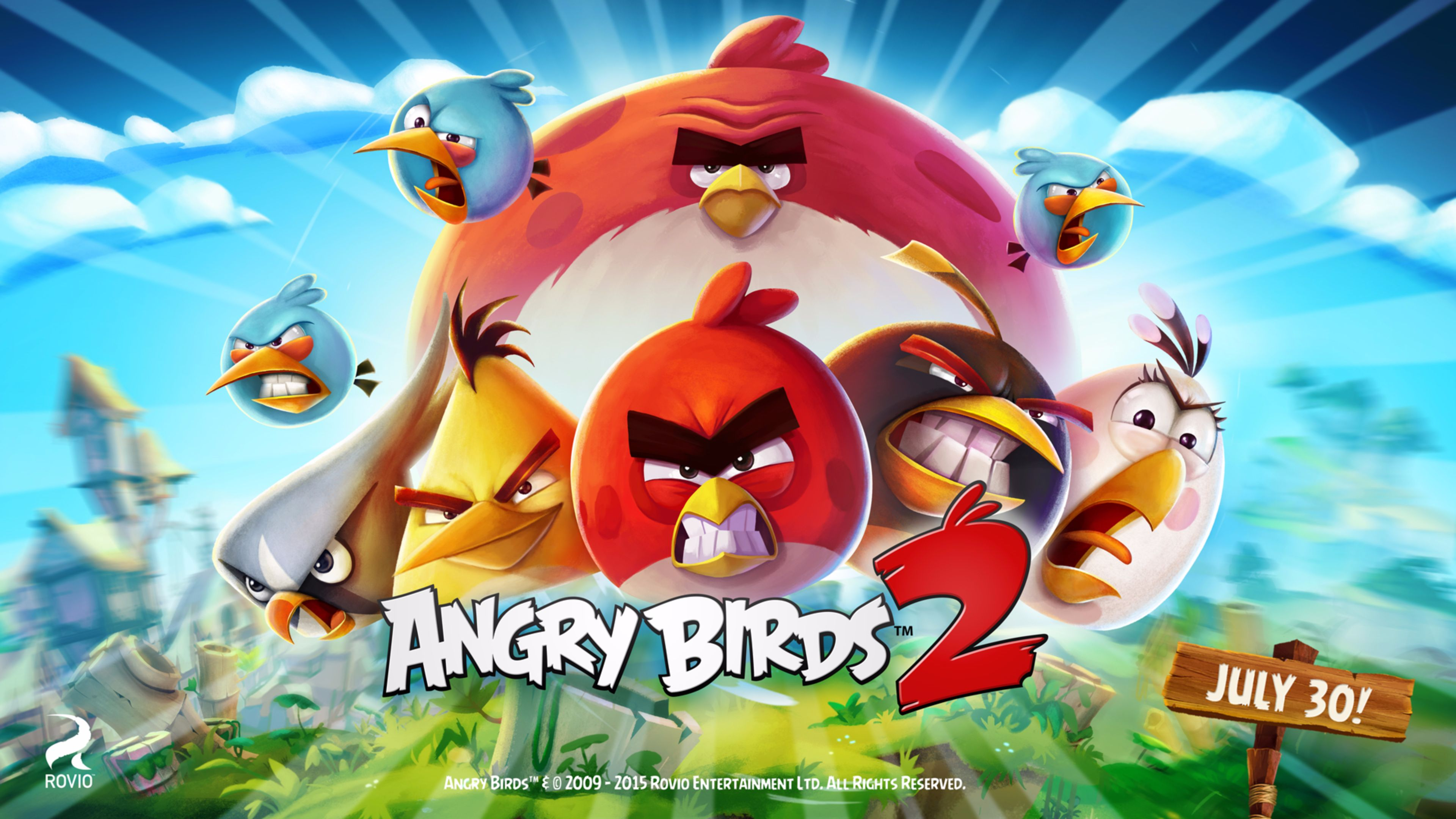 Release Date The Angry Birds Movie wallpaper