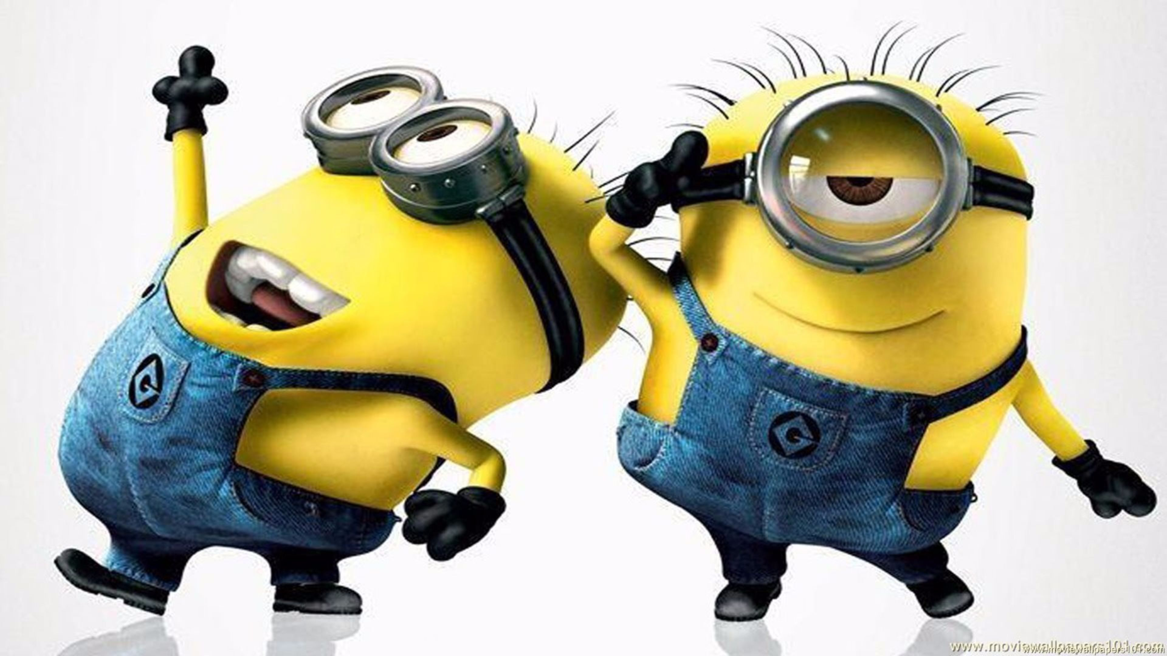 Minions Wallpapers Photos And Desktop Backgrounds Up To 8K