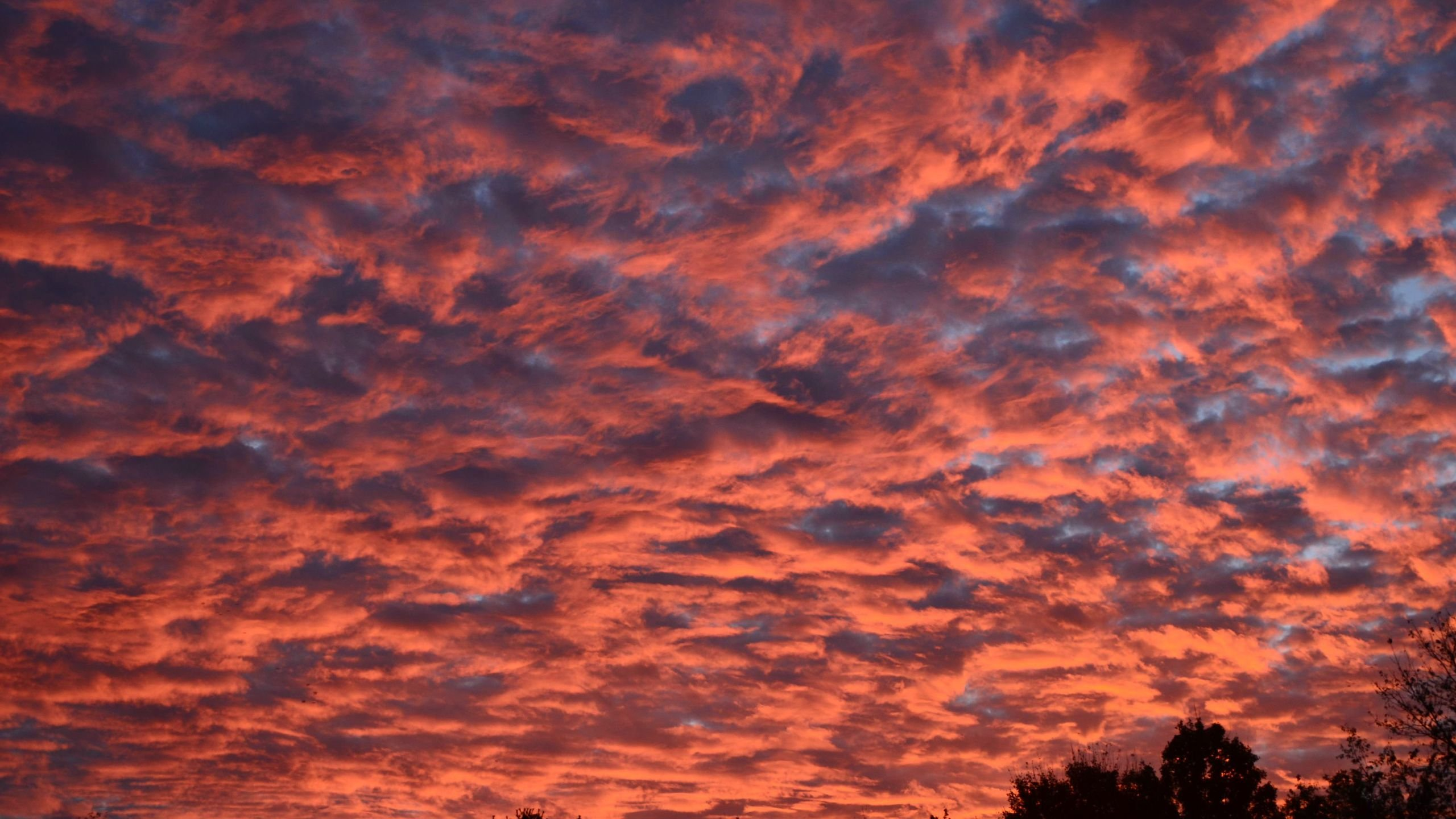 Beautiful Sunrise Clouds in East Tennessee wallpaper