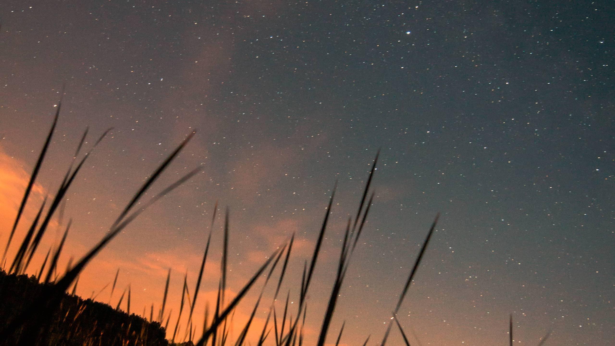 Sky Full Of Stars Hd Wallpaper
