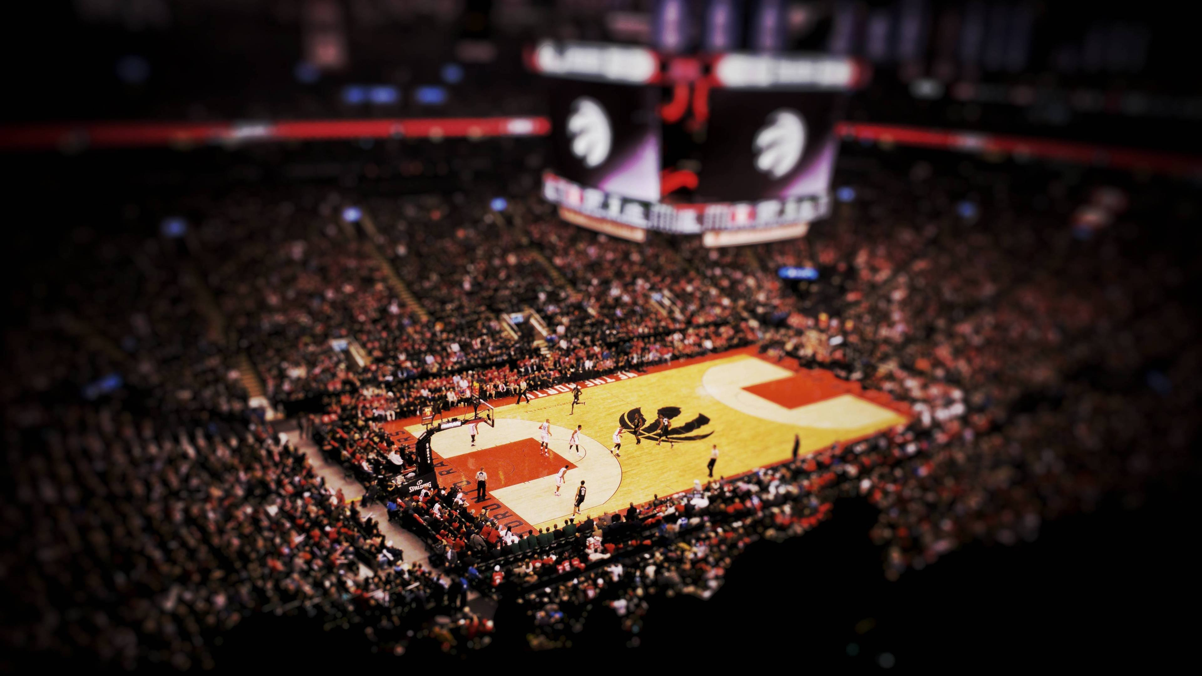 Best Wallpaper Logo Toronto Raptor - toronto-raptors-basketball-wallpaper  HD_37206.jpg