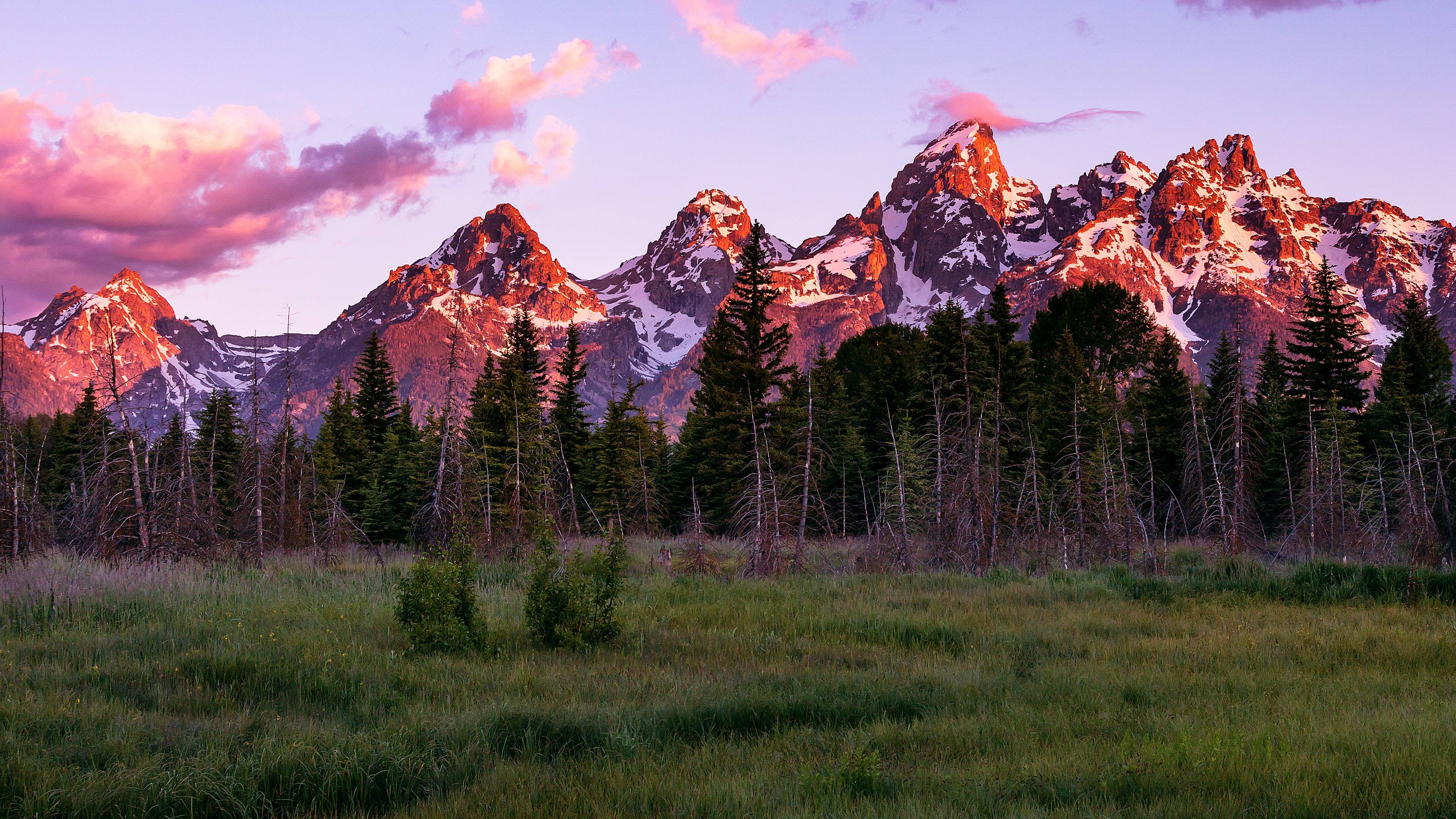 Teton Sunrise wallpaper