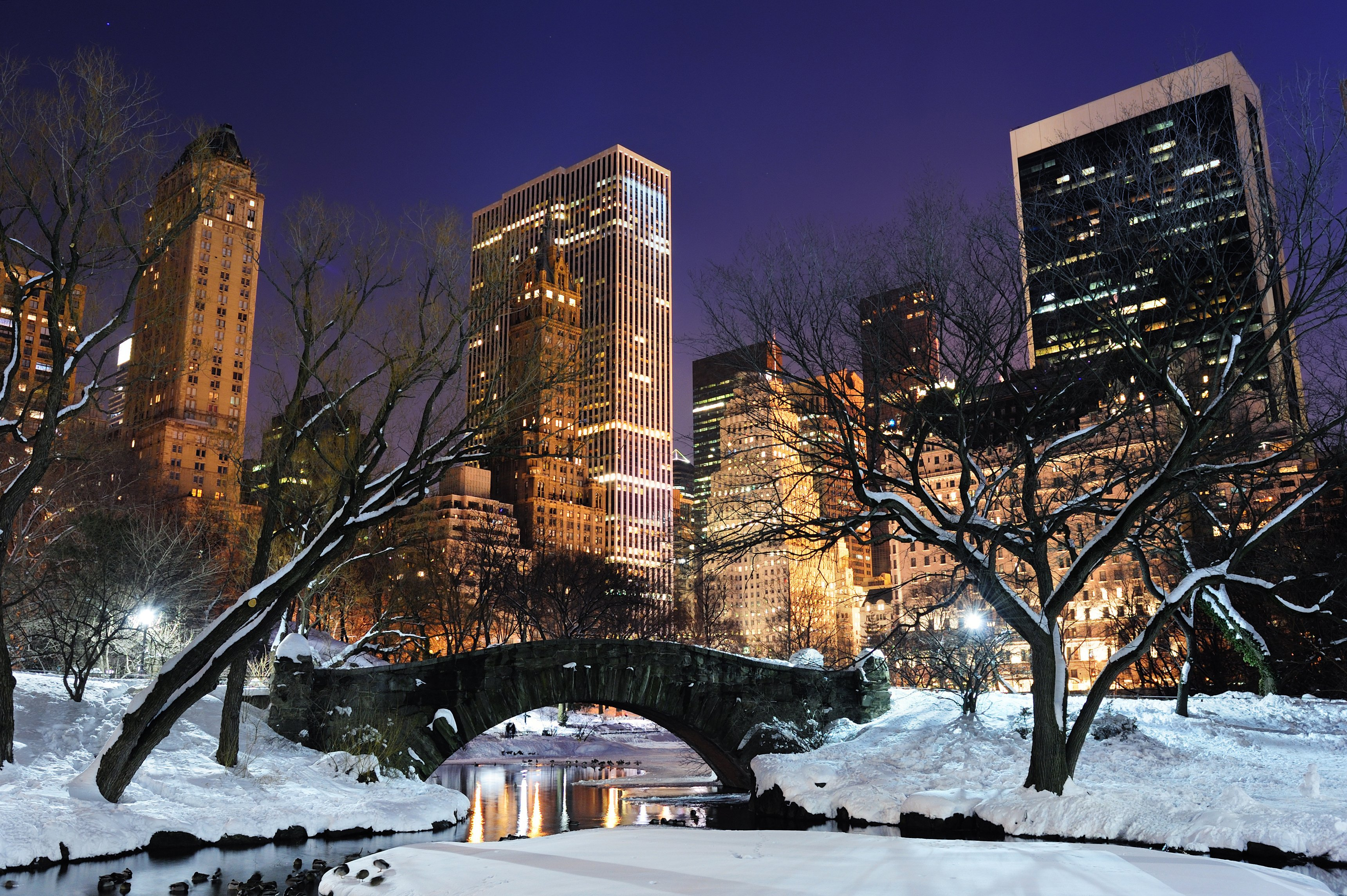 New York Central Park In The Winter Hd Wallpaper