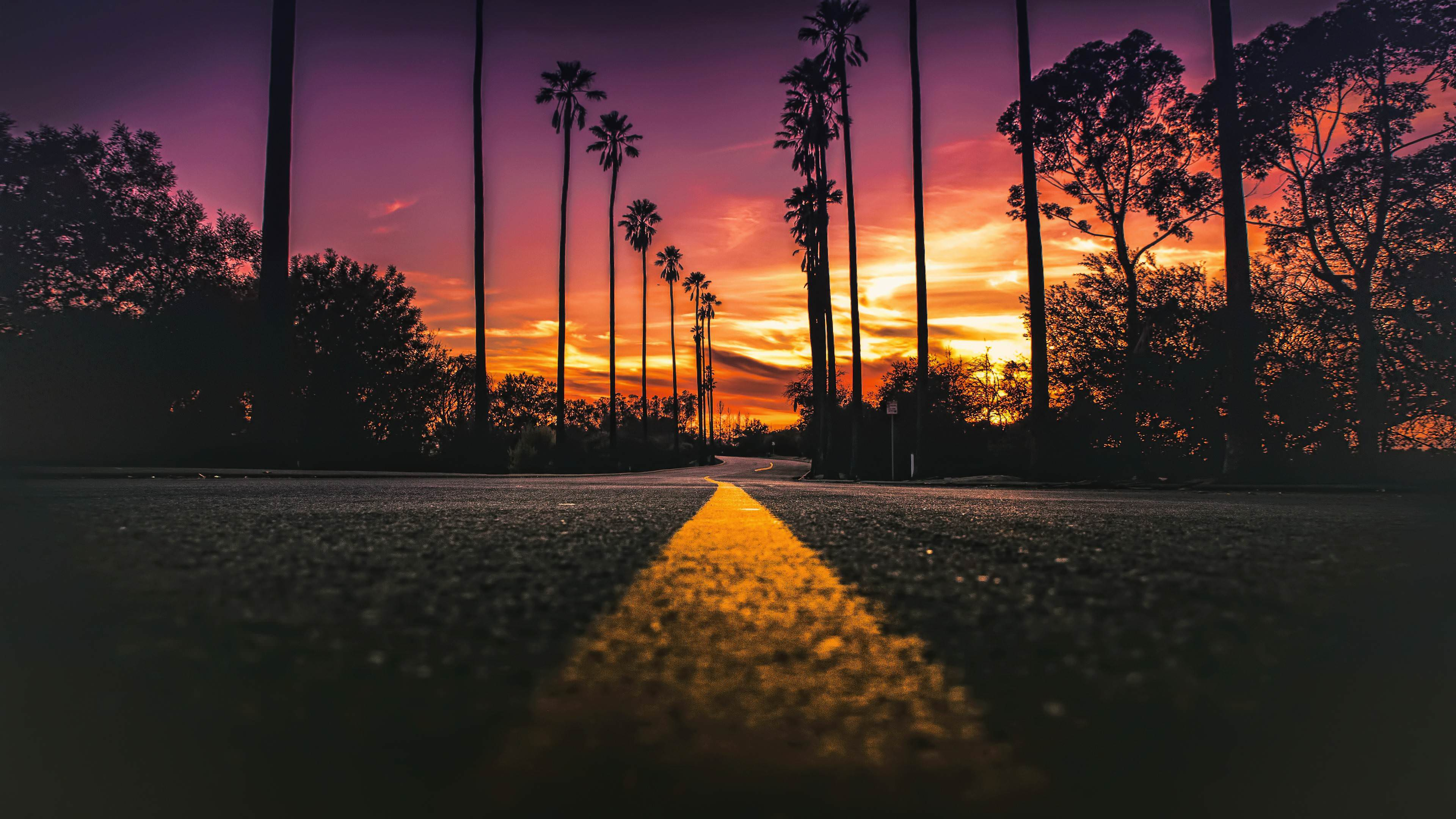 Street Of Los Angeles 4k Wallpaper