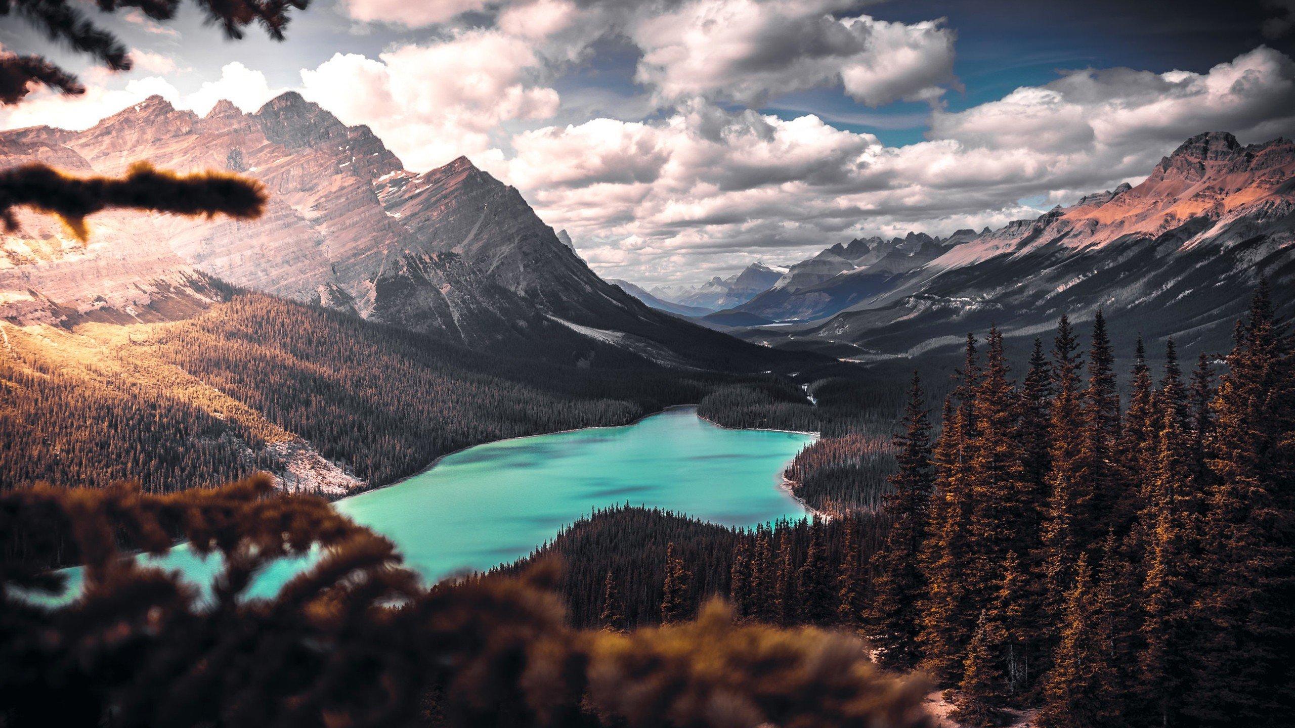 Scenic Landscape HD wallpaper