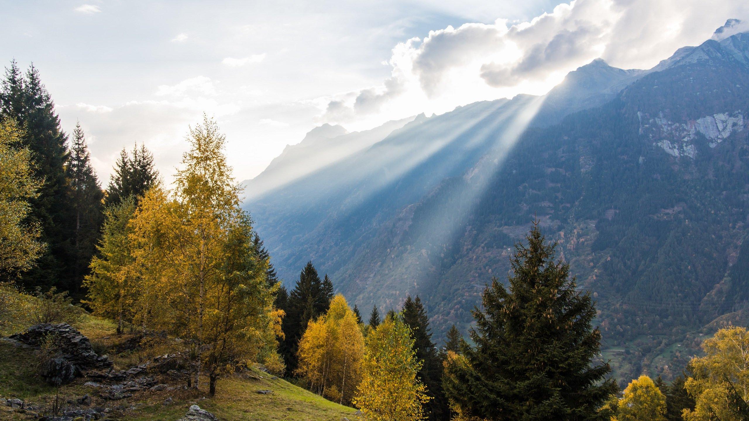 Fall In The Swiss Alps Hd Wallpaper