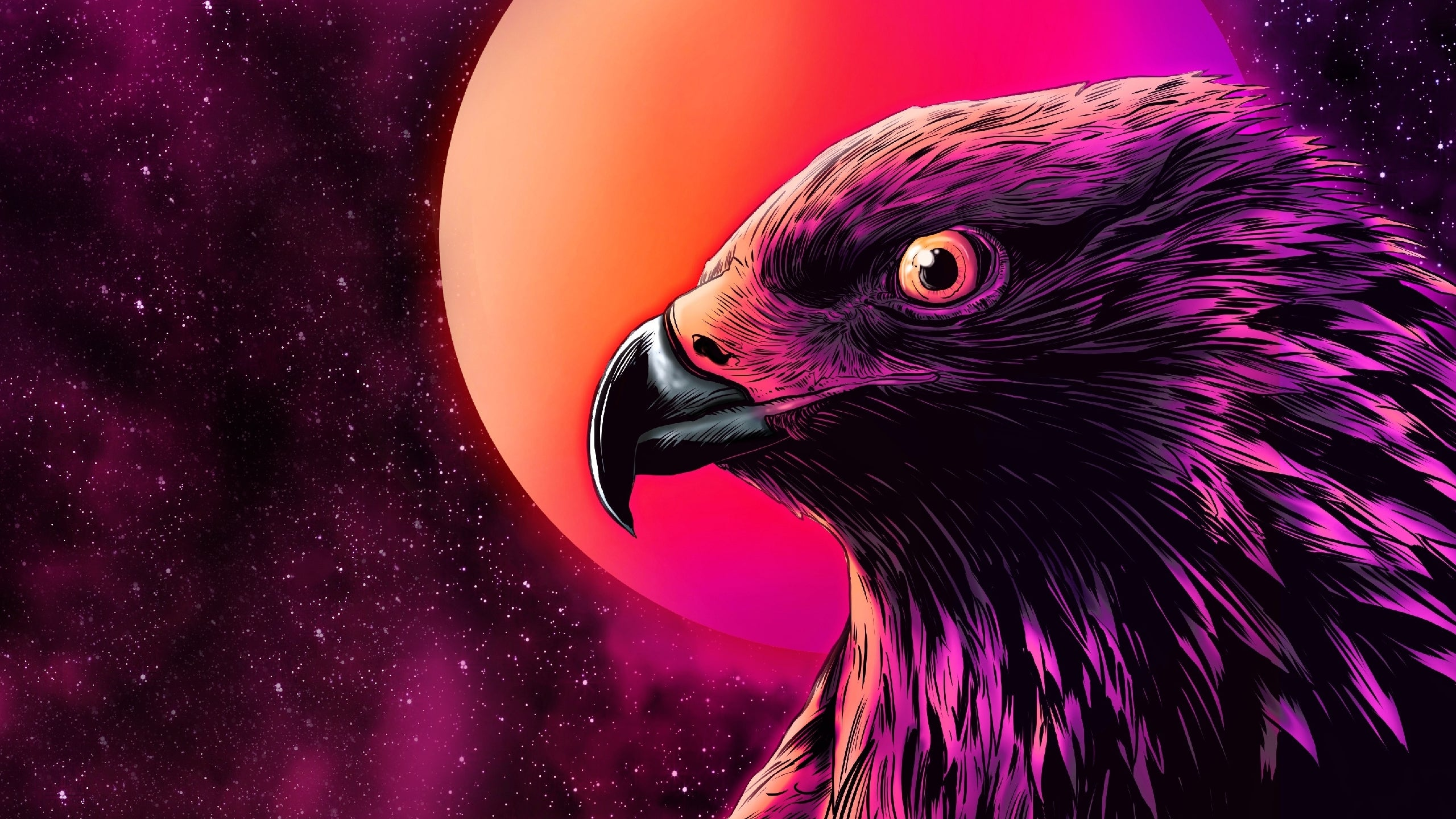Eagle 4k Wallpapers For Your Desktop Or Mobile Screen Free And Easy To Download