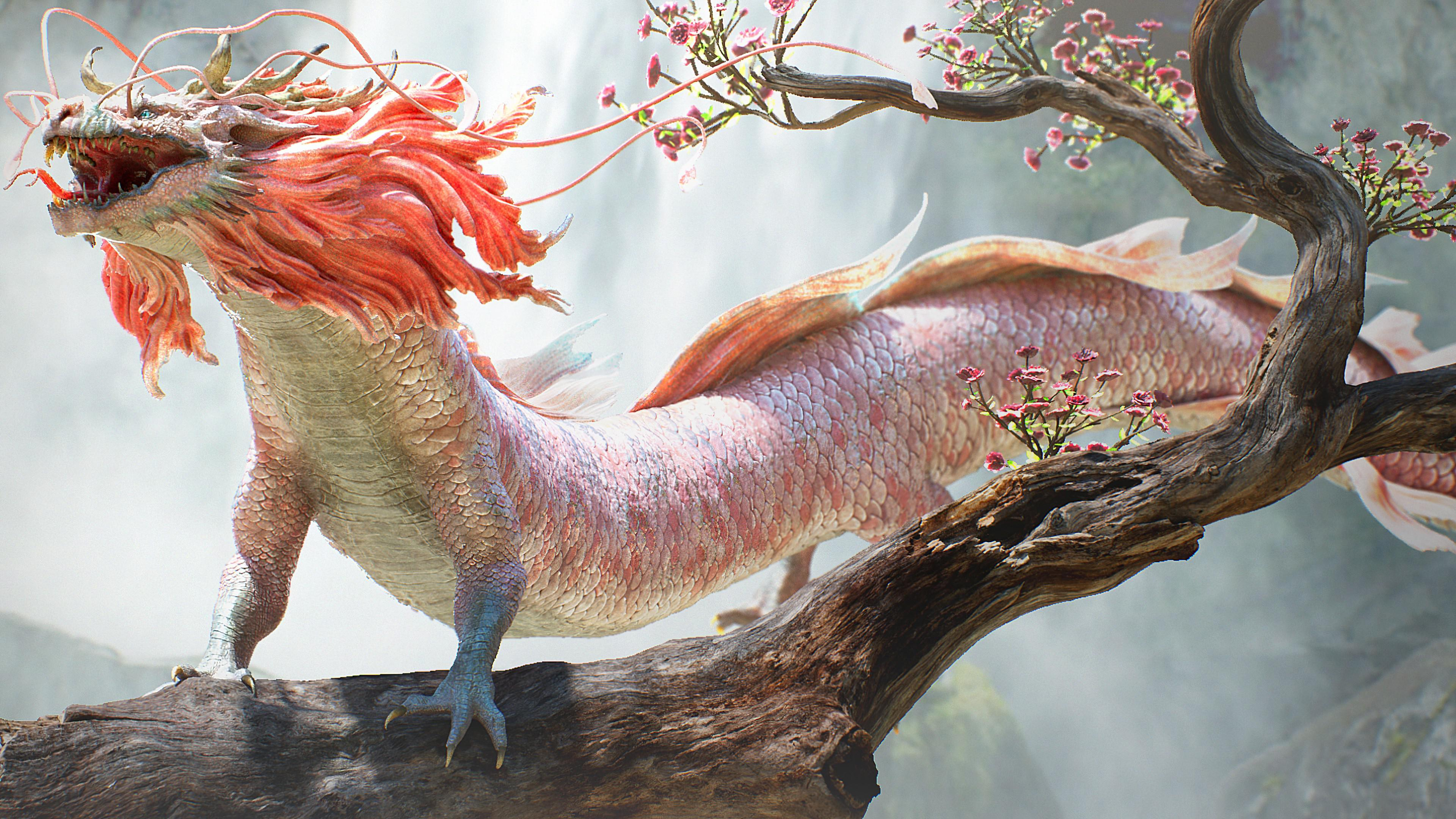 Dragon 4K wallpaper