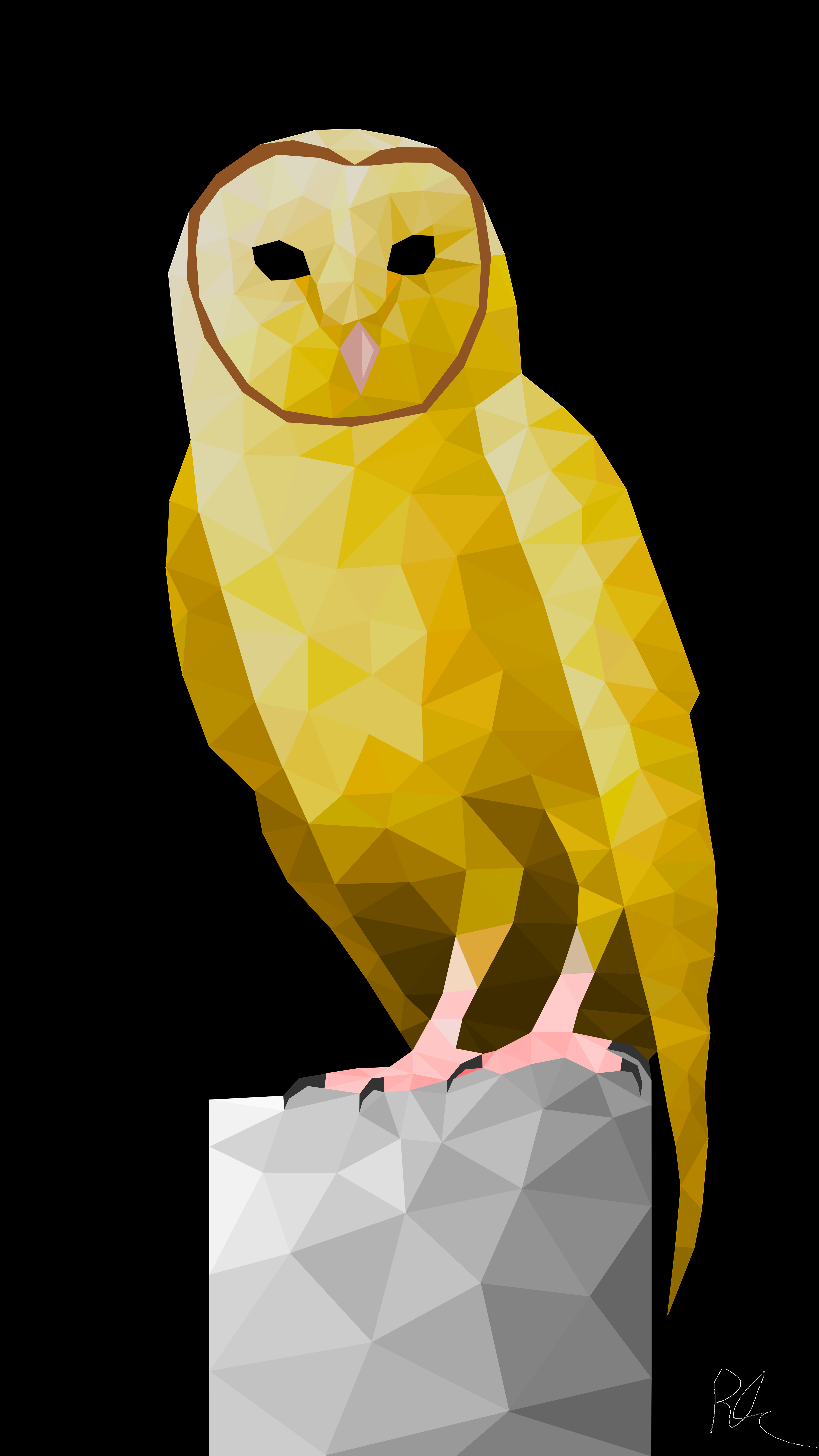 Owl 4k Wallpapers For Your Desktop Or Mobile Screen Free And Easy To Download