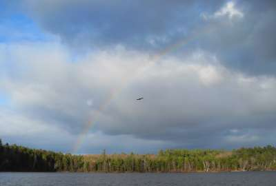 100% free online dating in rainbow lake This small lake contains some rainbow trout as well as largemouth bass rainbow lake rockingham no credit card required 100% free trial.