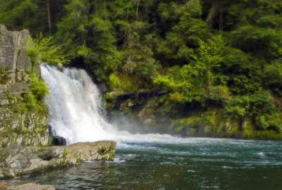 Forest Waterfall 1818 wallpaper
