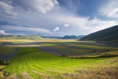 Green Fields With Blue Sky wallpaper