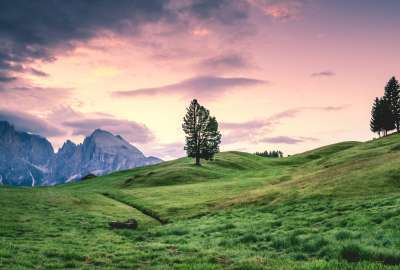 Green Grass Rocks and Beautiful Sky wallpaper