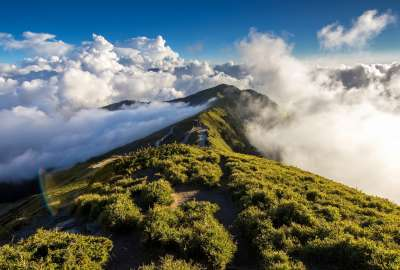 Mountaintop Over Clouds wallpaper