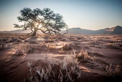 Namibia Africa Desert Sunrise wallpaper
