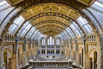 Natural History Museum London wallpaper