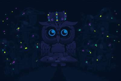 Owl King wallpaper