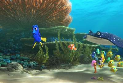 Reveal Finding Dory Movie wallpaper