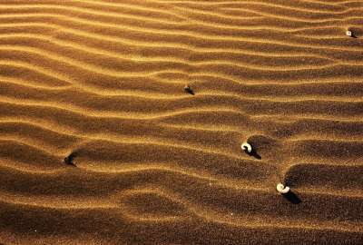Small Sand Dunes wallpaper
