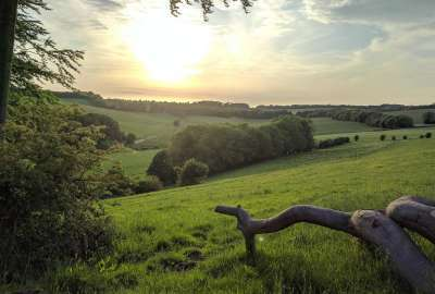 South Downs Falmer UK wallpaper