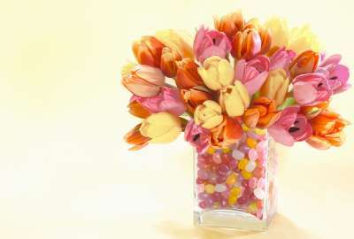 Spring Buds Arrangement wallpaper