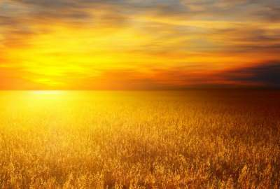 Sunset Over Wheat Bales wallpaper