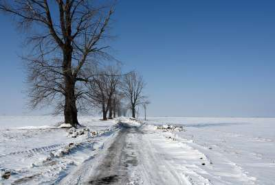 White Road in Winter wallpaper