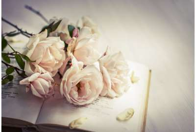 White Roses of Romance wallpaper