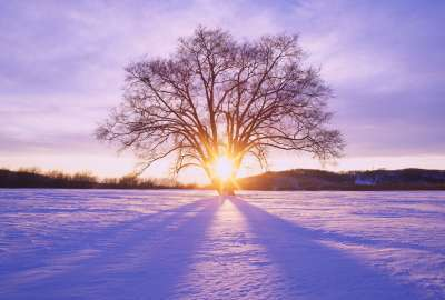 Winter Sunset S wallpaper