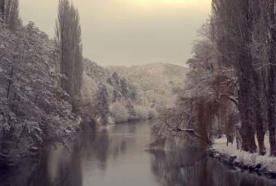 Winter Landscape and Trees wallpaper