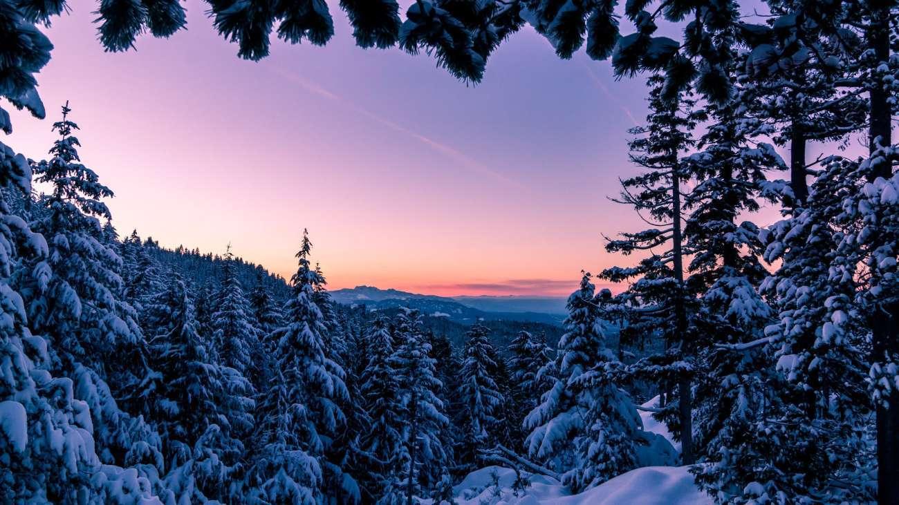 Winter Wonderland Vancouver Island Bc Facebook Cover