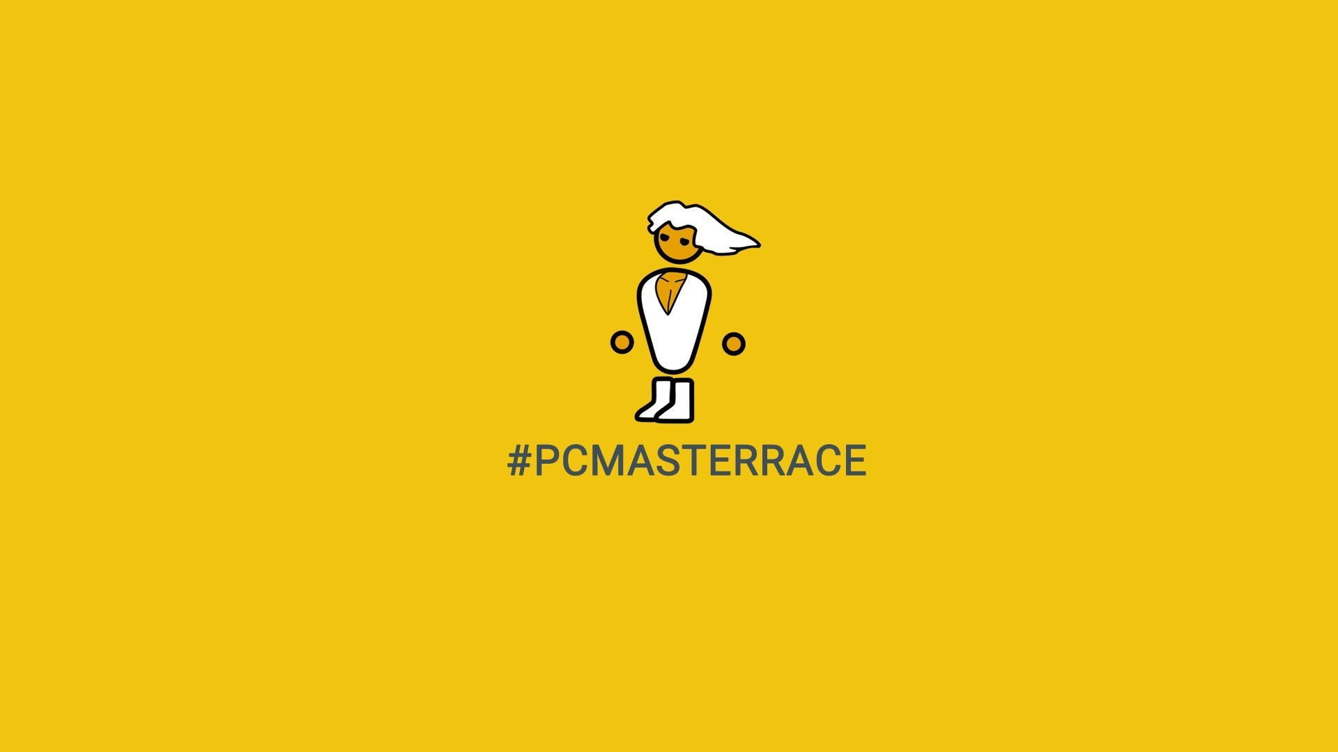 Simple Pcmasterrace Wallpaper In 1920x1080 Resolution